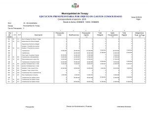 ejecucion-presupuestaria-de-gastos-mensual-consolidado-3